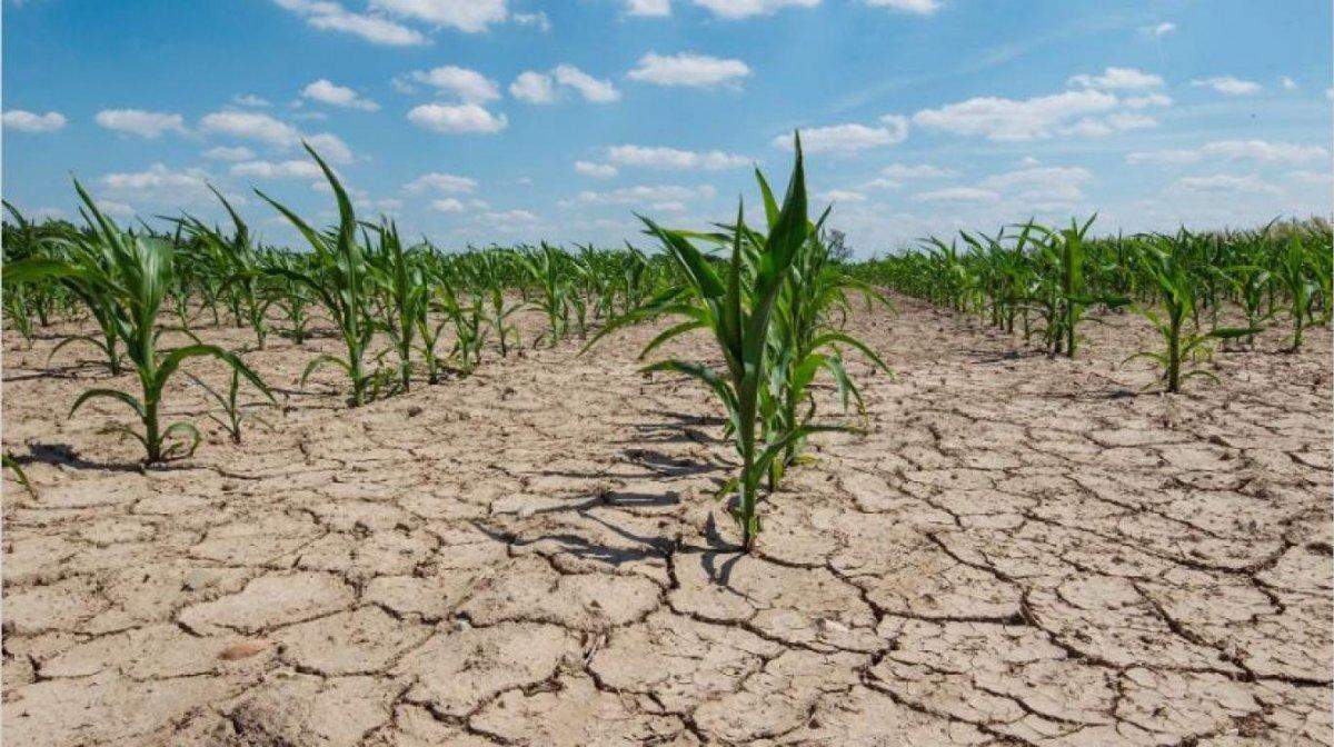 Clima y política