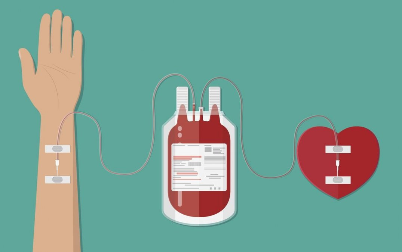9 de noviembre - Día Nacional del Donante Voluntario y Habitual de Sangre