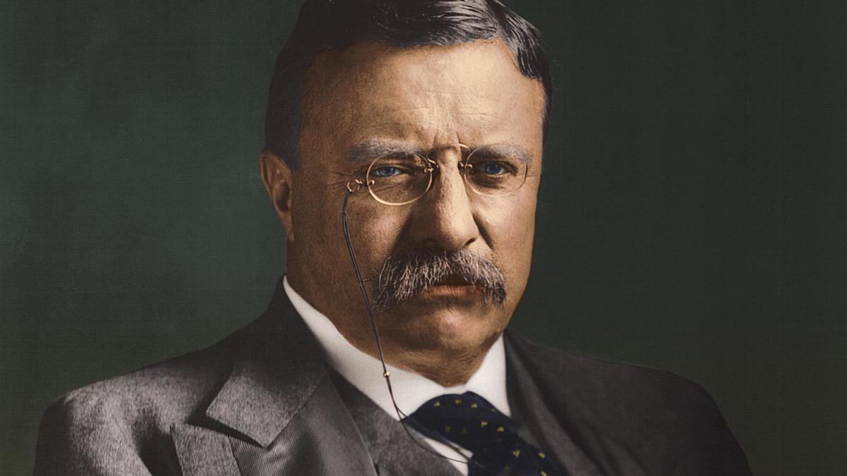 Theodore Roosevelt (27 de octubre de 1858 - 6 de enero de 1919).