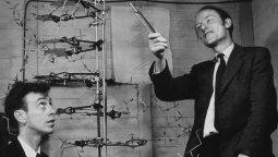 James Watson y Francis Crick junto a uno de sus modelos de la molécula del ADN en el Laboratorio Cavendish de Cambridge en 1953.