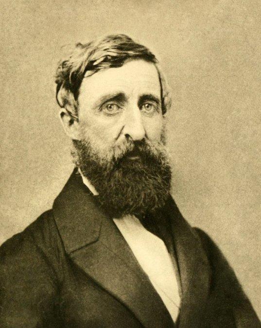 Vivir deliberadamente: los proyectos de Thoreau