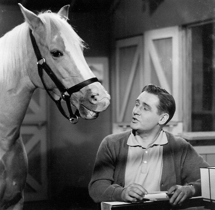 Mr. Ed, el caballo que hablaba