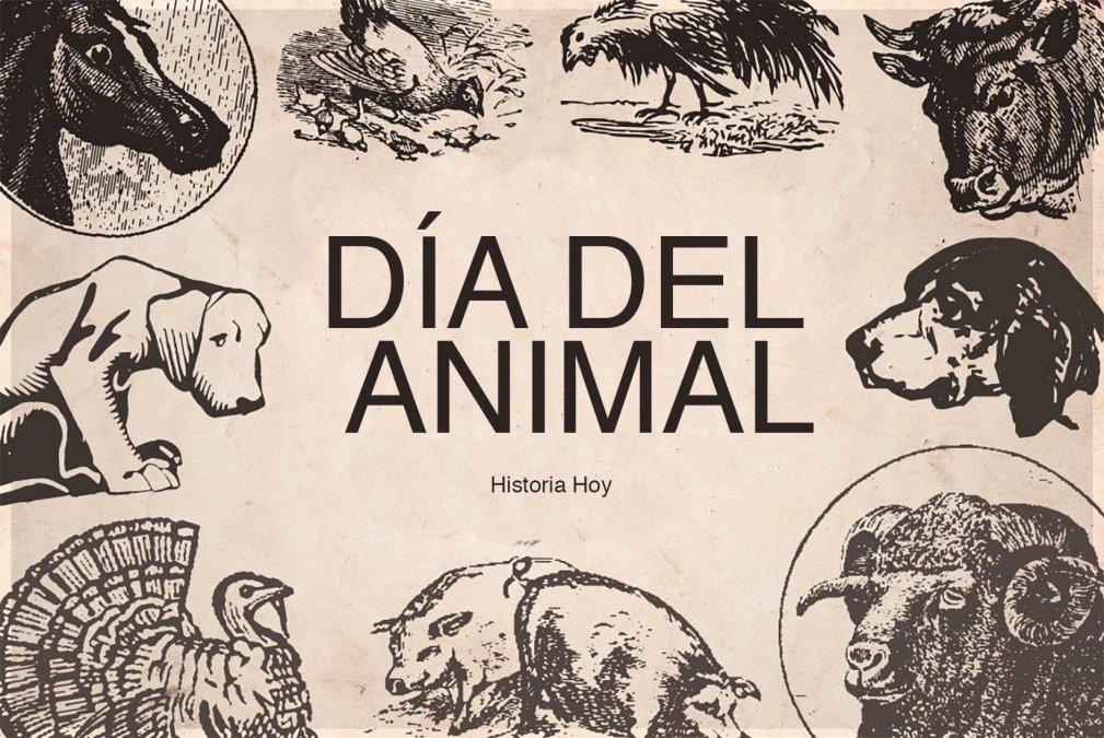 En el día del Animal