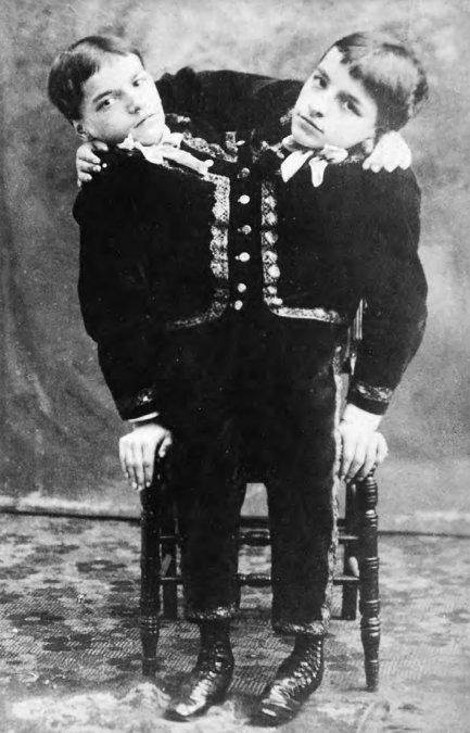 Giovanni Battista y Giacomo Tocci